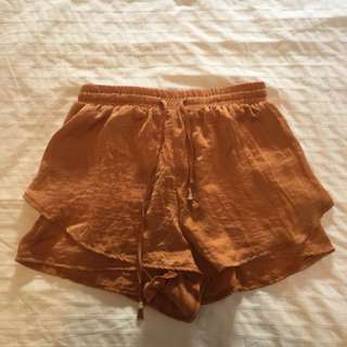 Silk Satin Dissh Shorts 10