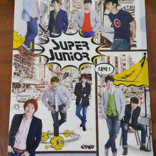 Super junior unofficial file