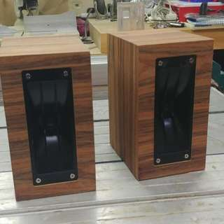 Custom built speaker cabinets or speakers