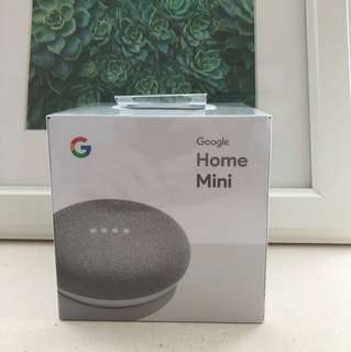 Google Home Mini (Chalk/White)