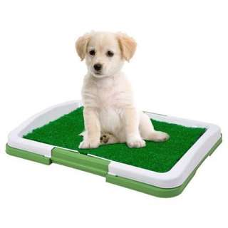 Potty Trainer for your Pets