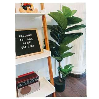 Artificial Fiddle Fig Plant