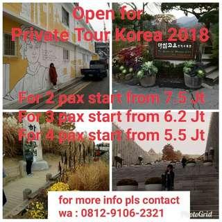 Private tour korea