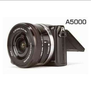 Kredit Sony A5000 KIT 16-50MM Mirrorless