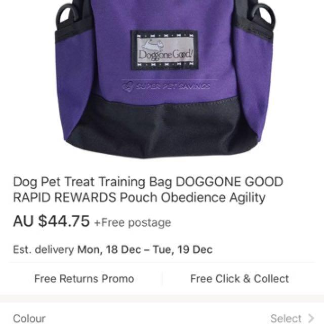 Pet Walk Treat Reward Pouch