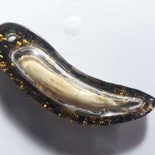 Thai Amulet - Crocodile Tooth