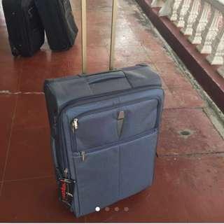 Delsey 2-wheel medium luggage