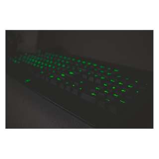 Razer Mechanical Keyboard Blackwidow 2014