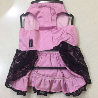 Classy Lacey Dog dress