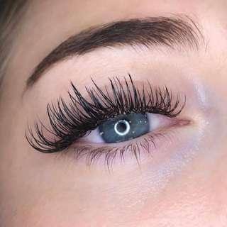 Eyelash Extensions, Lash Lift & Lash Tint