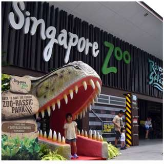 SINGAPORE ZOO with TRAM RIDE INCLUDED