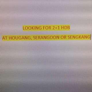 Looking for 2+1 Hdb at Hougang,Sengkang