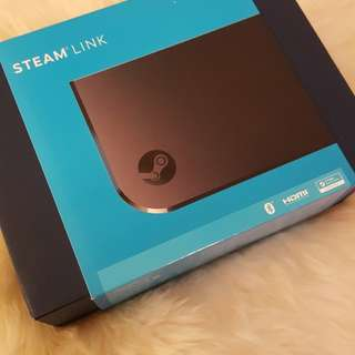 BNIB Steam link