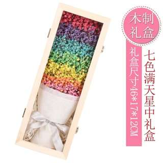 INSTOCK 7 COLOURS DRIED BABY BREATH