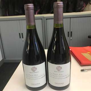 Wine 紅酒 wild ferment errazuriz vintage:2015 兩支