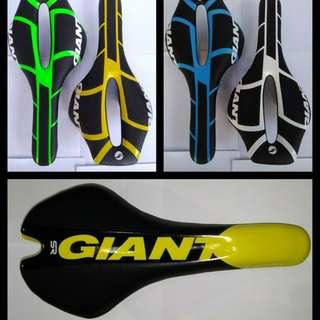 Giant Saddle