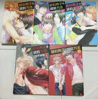 (Pre-Loved) Boy's Love Manga