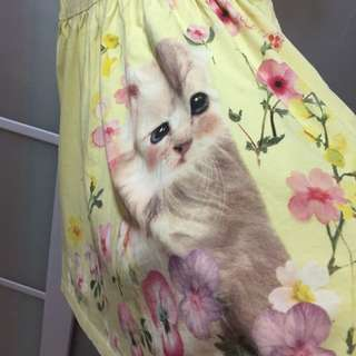 Cute kitten yellow dress