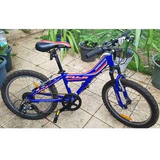 "Fuji Sandblaster Children's 20"" Bicycle"