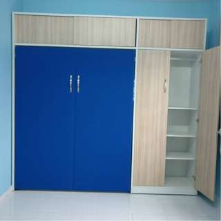 Wall Bed with Closet