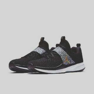 Jordan Trainer 2 Flyknit Black/Metallic Gold