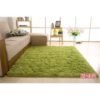 🚚 二手草綠色地毯160*160