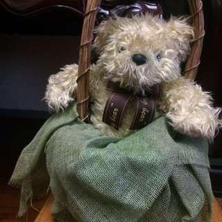 🚚 泰迪熊附提籃