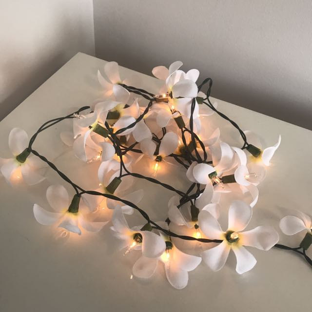 💕Rare Frangipani Flower String Lights 💕10ft