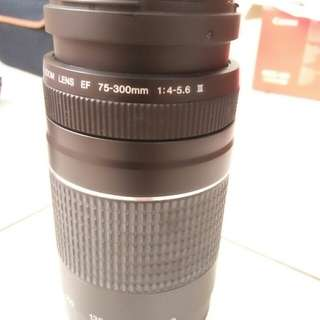 lens canon 75-300mm