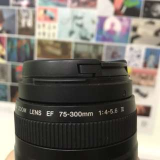 Canon EF 75-300mm f/4-5.6 lll