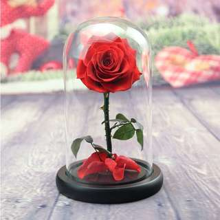 🌹Red Preserved Rose Handmade. Last 1 year without water!