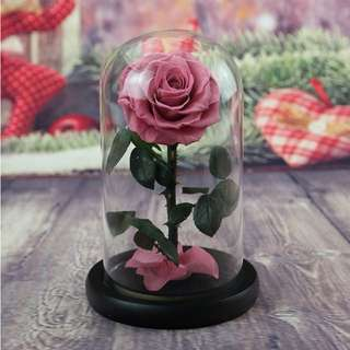 🌷Handmade Magenta Preserved rose for Valentine's day!