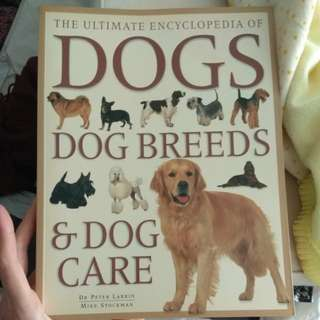 Dog Breeds and Dog Care