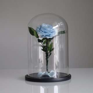 Giant Size Premium Preserved Roses In Glass Dome