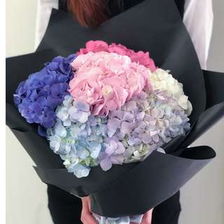V Day Collection - Simply Hydrangea