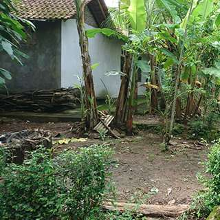 Rumah Sungapan Sedayu Yogyakarta