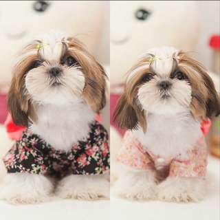 1pcs Pet Dog Floral Japanese Kimono Clothing Dress (Brand New)