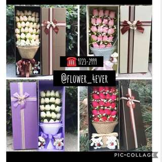 Flower in boxes