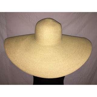 F21 Wide Brim Hat