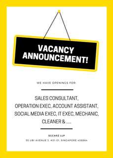Sales & Operation Executive