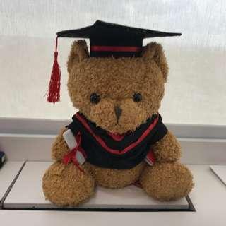 Furry Dark Brown Graduation Bear (2)