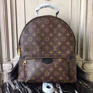 Louis Vuitton LV palmsprings large Backpack