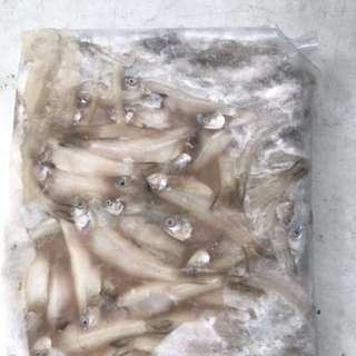 Frozen Ikan billis