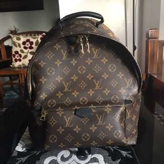 Louis Vuitton Palms Spring Backpack in MM