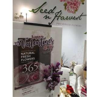 Flowers - Valentine's Day