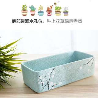 Succulent Bonsai Pot