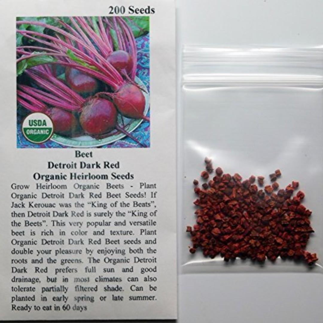 David's Garden Seeds Beet Detroit Dark Red EB120C