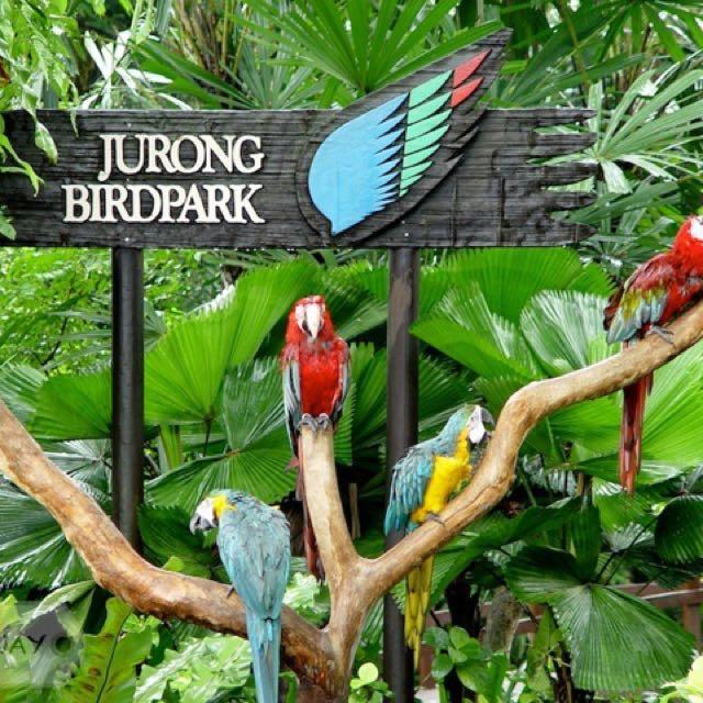 Jurong Bird Park ☝🏻 SG