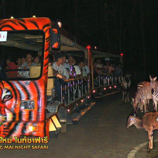 Night Safari ☝🏻 SG