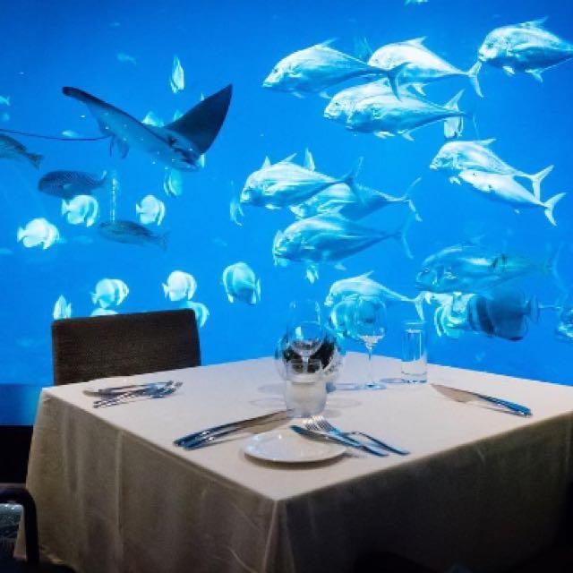 S.E.A Aquarium ☝🏻 Singapore